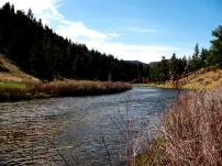 The South Platte River near Evergreen, CO
