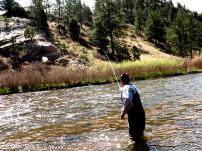 Fly Fishing in the Platte River